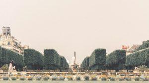 París nunca se acaba I Guía Rive Gauche I Ser Viajera