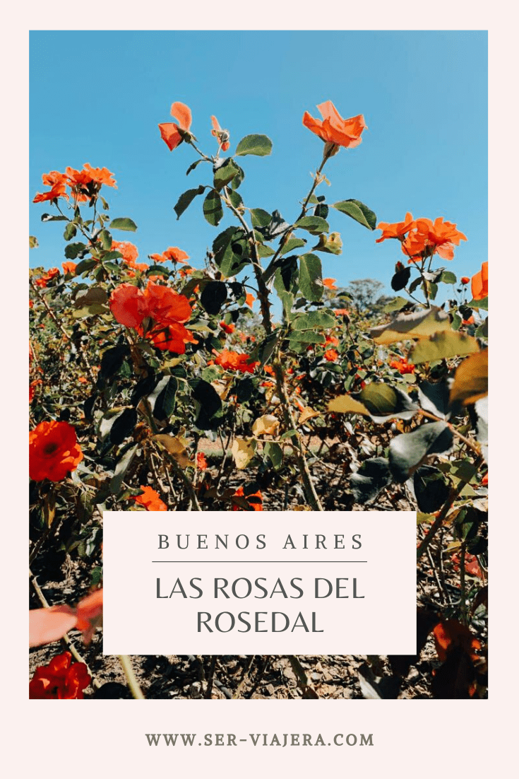 rosas del rosedal de palermo ser viajera